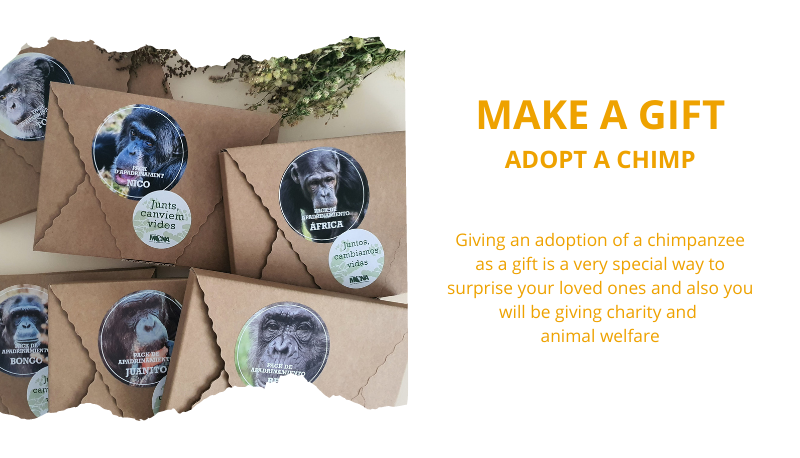 Make a gift. Adopt a chimp.